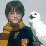Первое издание «Гарри Поттера» с пометками автора выставлено на торги