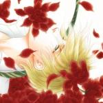 Fanart by Shinshi