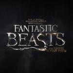 Стали известны некоторые подробности сюжета фильма «Фантастические зверей и места их обитания»